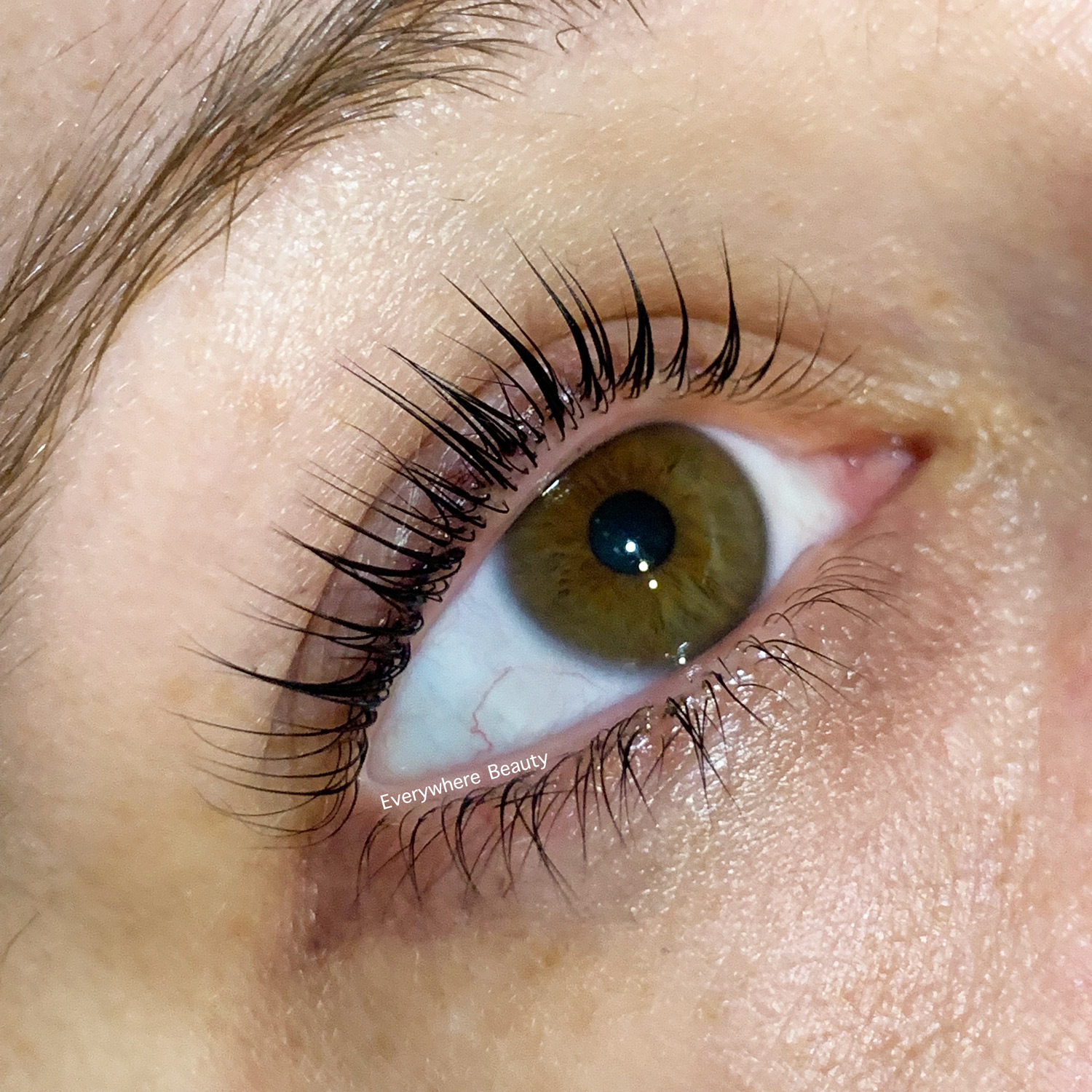 Everywhere Beauty -  <strong>The original offer: <br>30% off a Lash lIft and Tint at our Cremorne location only</strong>